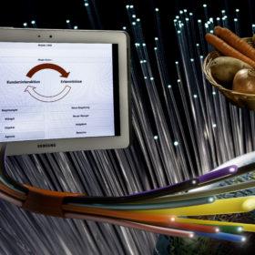 Glasfaser Breitband
